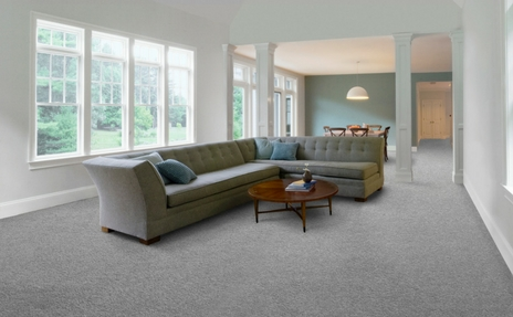 Top rated carpet brand